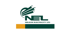 Nelson Electricity