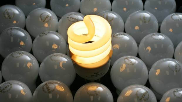 An Ecobulb energy efficient lightbulb amongst frosted incandescent bulbs. Photo by Nzherald.com